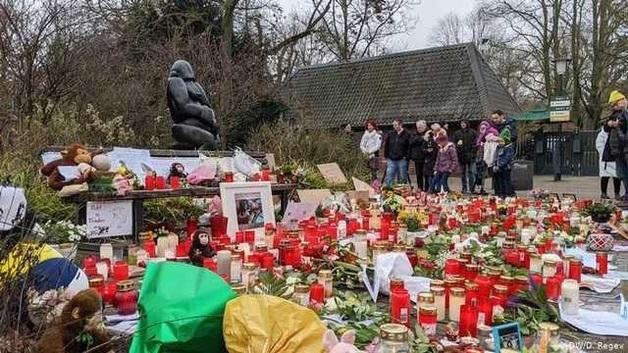 Пожар в немецком зоопарке: Мать с дочерьми признались в содеянном