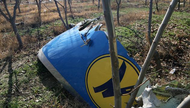 Катастрофа літака МАУ: у неділю біля