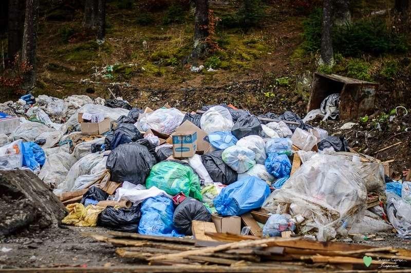 Активісти показали, скільки сміття залишилось у Карпатах після свят
