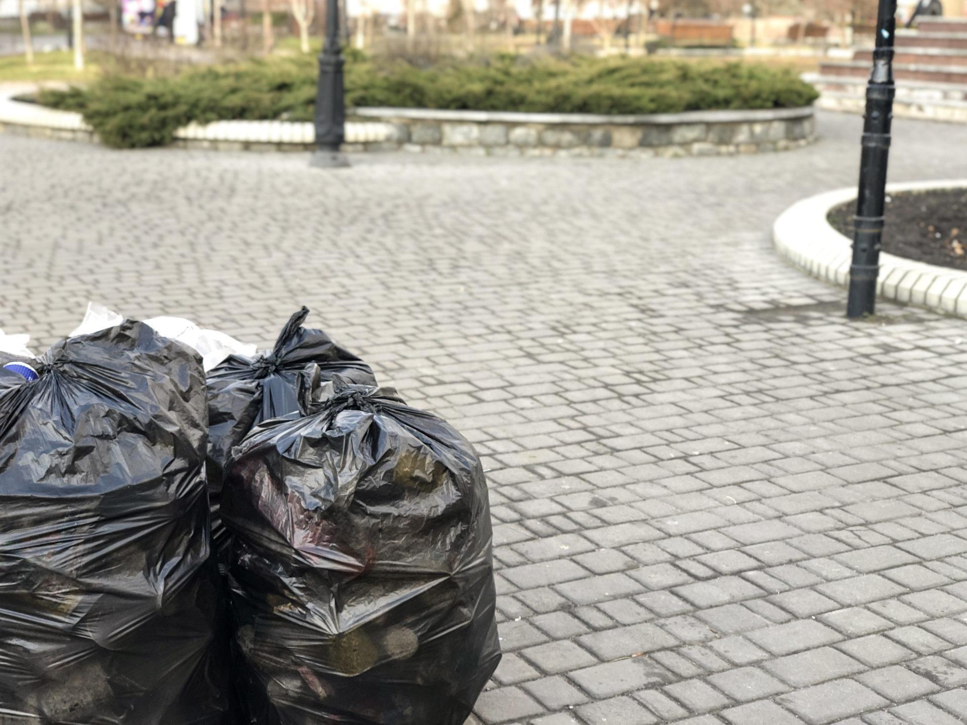 В новогоднюю ночь 2020 бердянцы мусорили меньше, чем в 2019