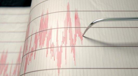 Землетрясение произошло в 500 километрах от Алматы —
