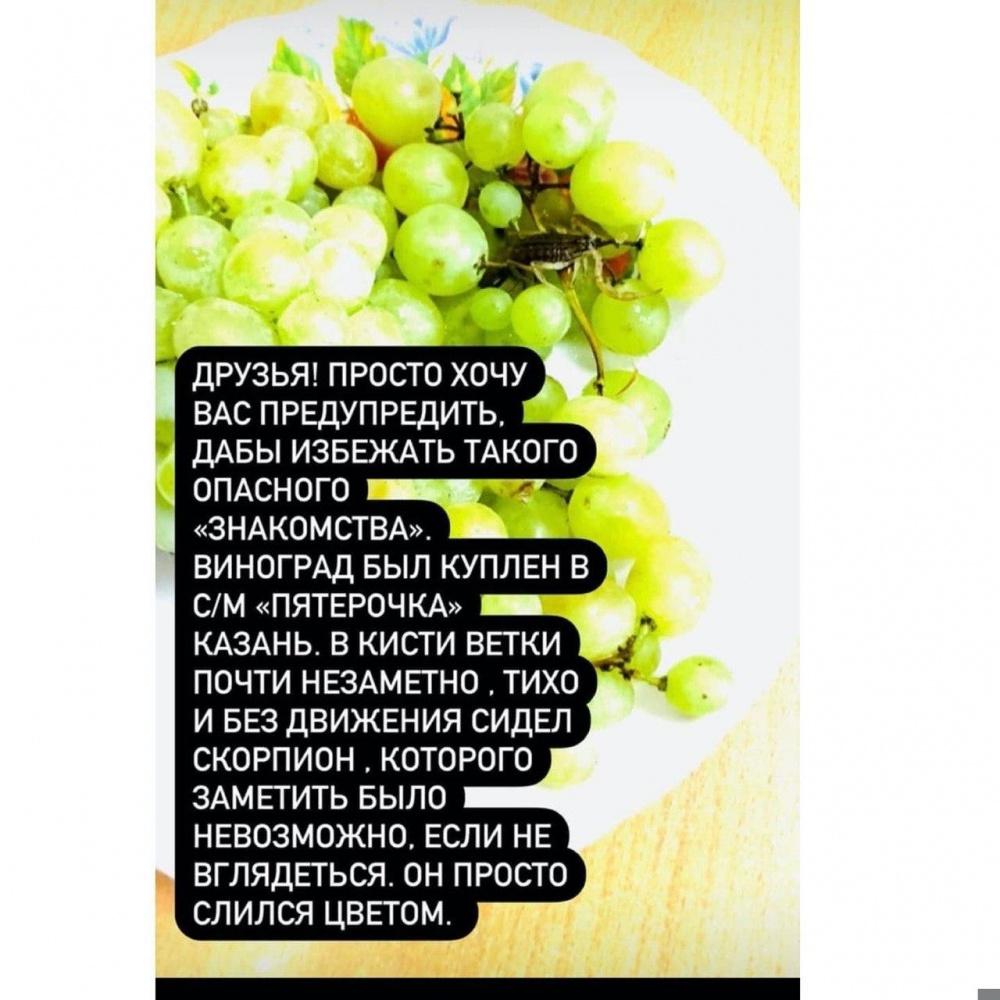 Женщина купила виноград и стала жертвой скорпиона — такого не ожидал никто (фото)